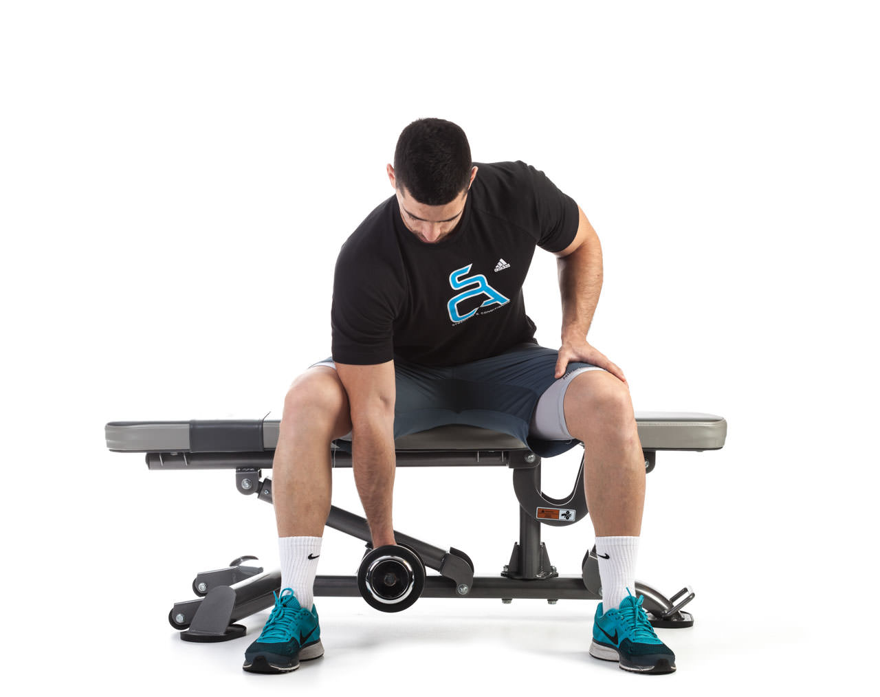 Seated Dumbbell Concentration Curl frame #1