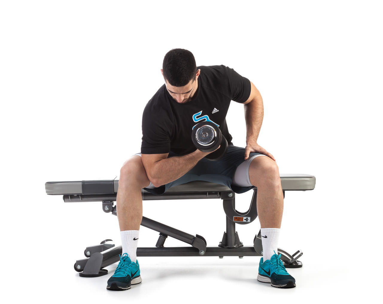 Seated Dumbbell Concentration Curl frame #2