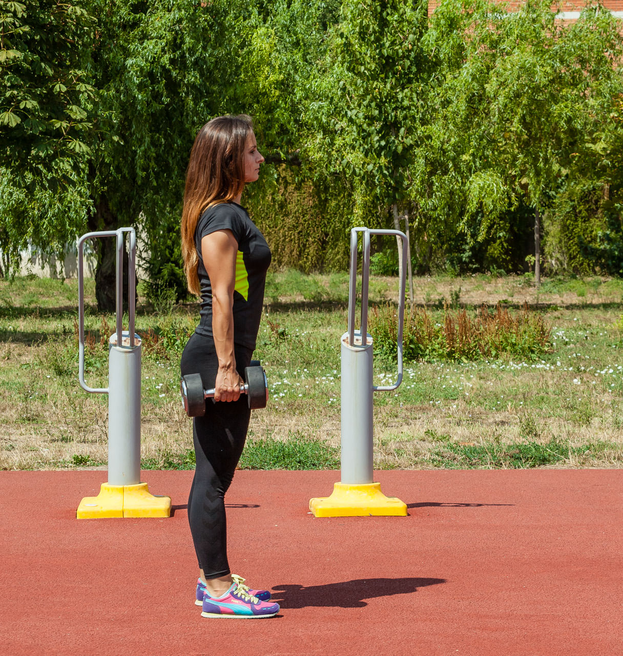Dumbbell Lunges frame #1